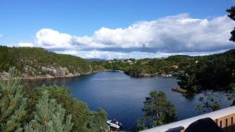 fischarten norwegen übersicht